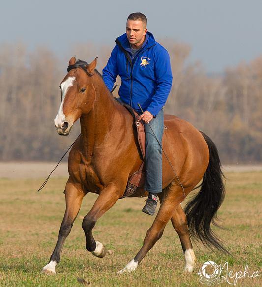 Török Gyuri, free horse style